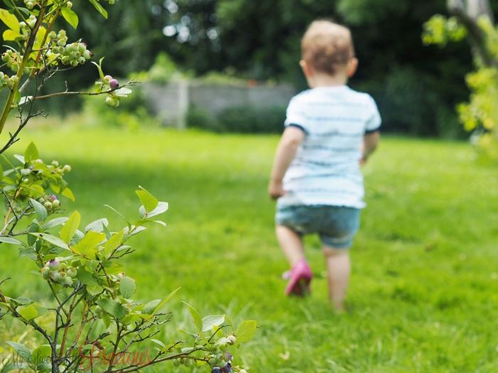 dziecko w zieleni